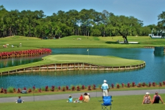 17th Hole at TPC Sawgrass, Ponte Vedra, jacksonville
